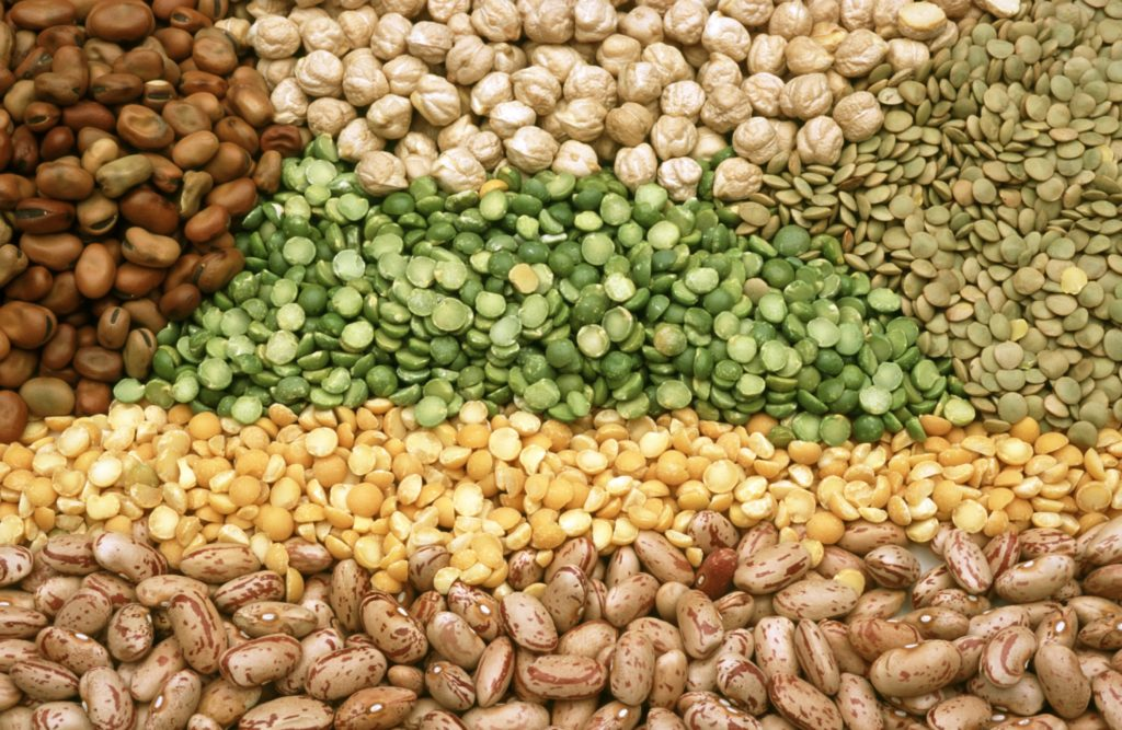 easy build pulses and legumes for body building mass